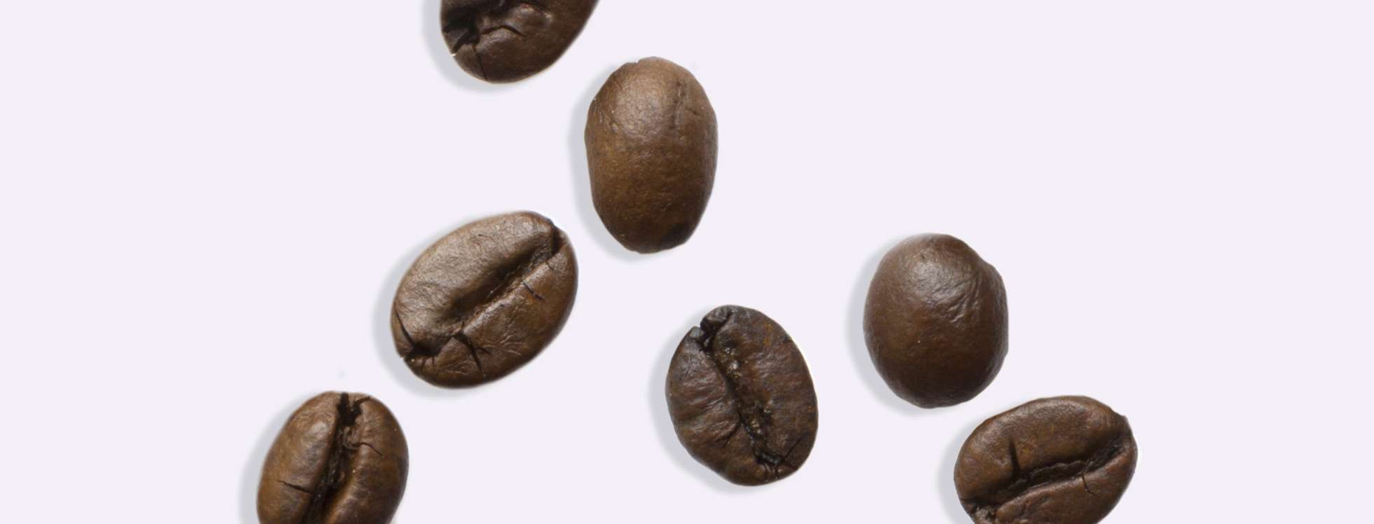 Coffee beans on grey background