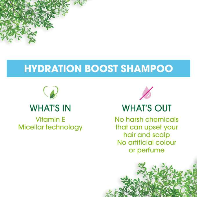Simple Hyration Shampoo  What's In