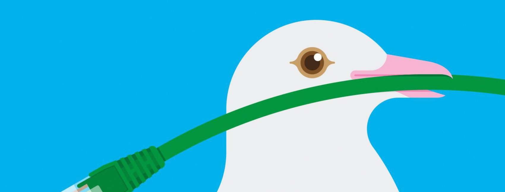 Illustration of a white dove with a computer cable in its beak